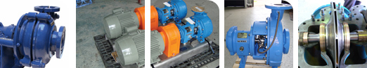 Summit pumps and pump parts